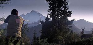 Deerhunter image 2